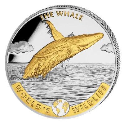 Worlds Wildlife Kongo Wal Gilded, 1 Oz Silbermünze, 2020
